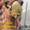 15 Things That Happen When You