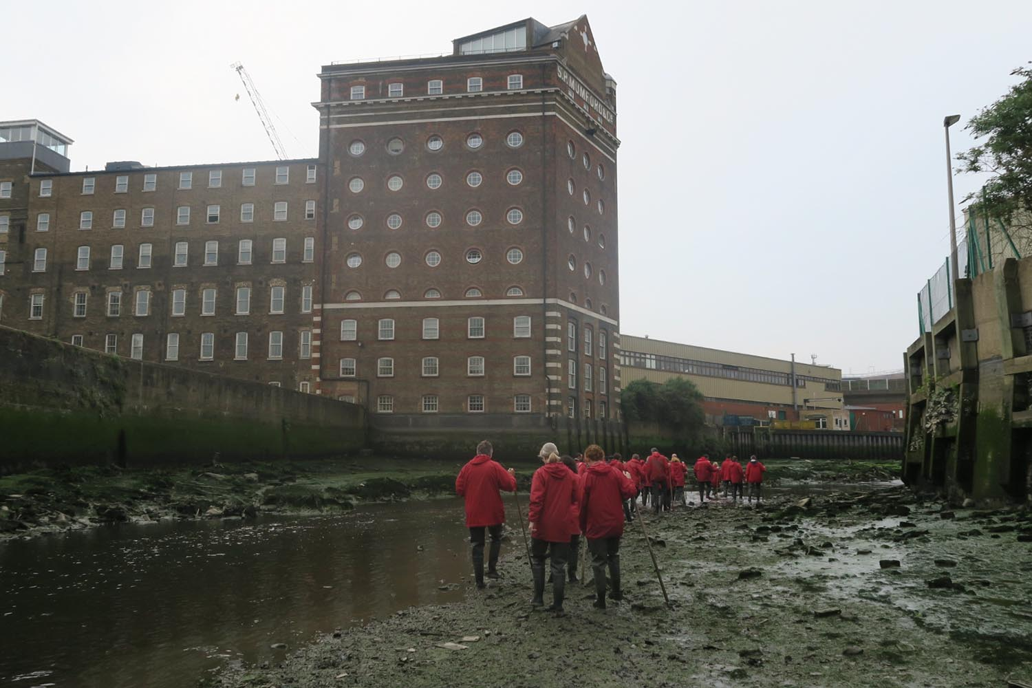 Twice a month, the Creekside Education Fund open their doors to those interested in exploring Deptford Creek during low tide, in all its muddy glory. width=