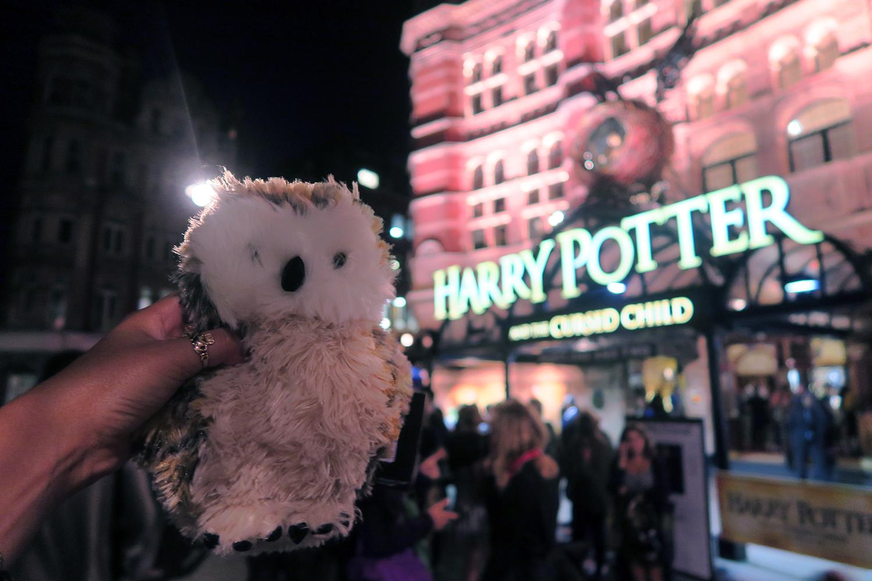 harrypotter-cursedchild-owl