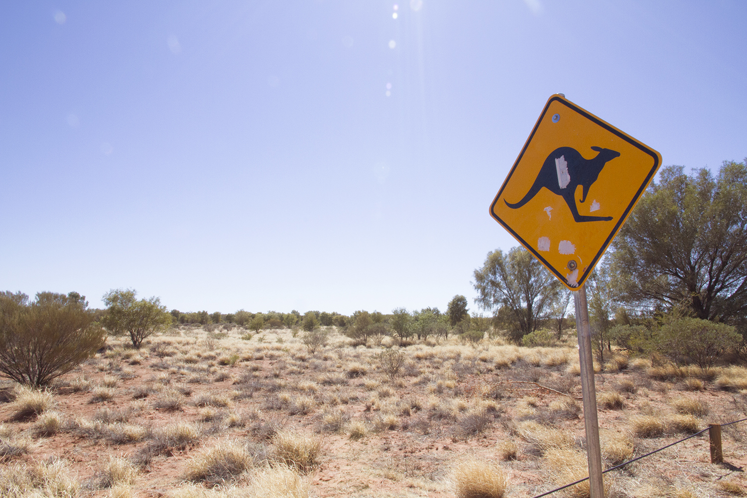 kangaroo-sign
