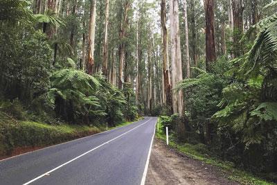 Road Trip Australia: 20 Routes For Your Next Journey