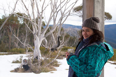 Alpine Nature Experience: An Eco-Adventure in the Snow